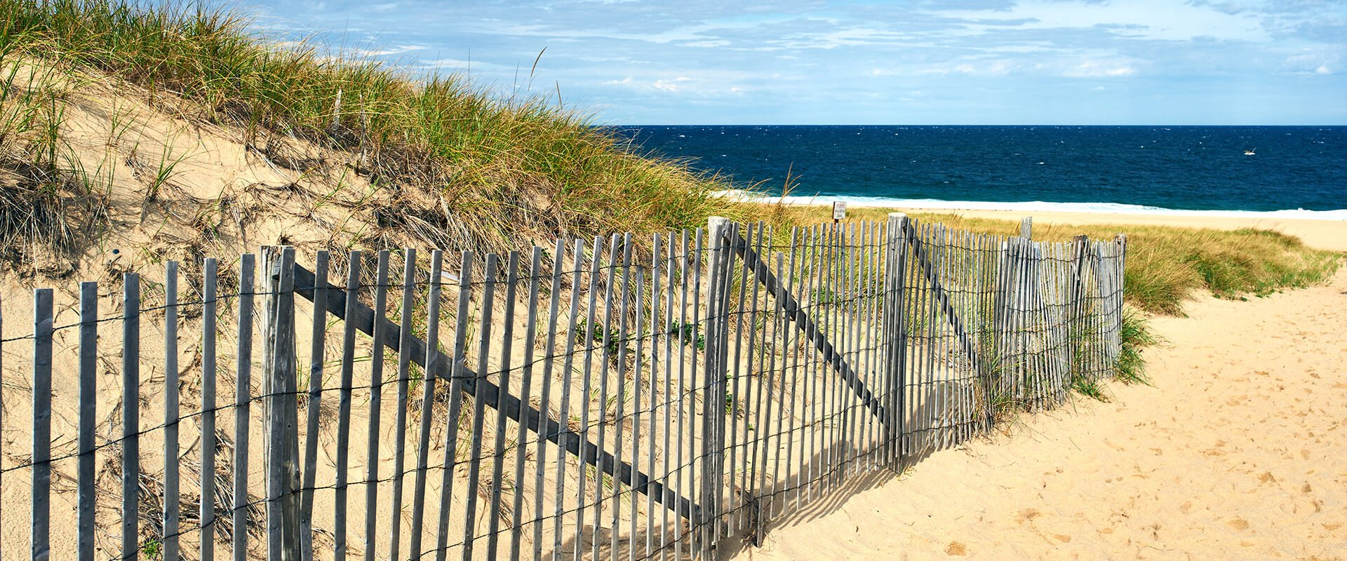 Path way to beach at Cape Cod